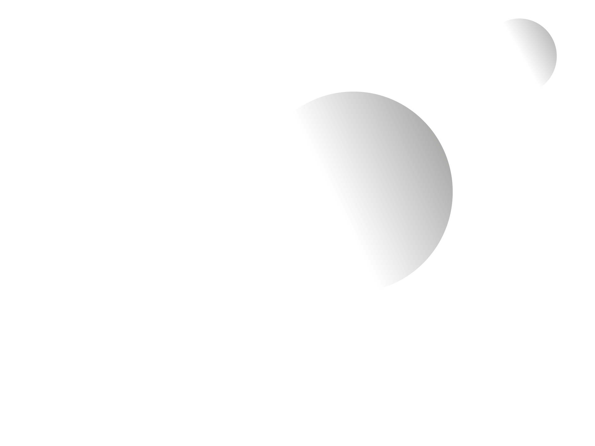 www.noitorino.it